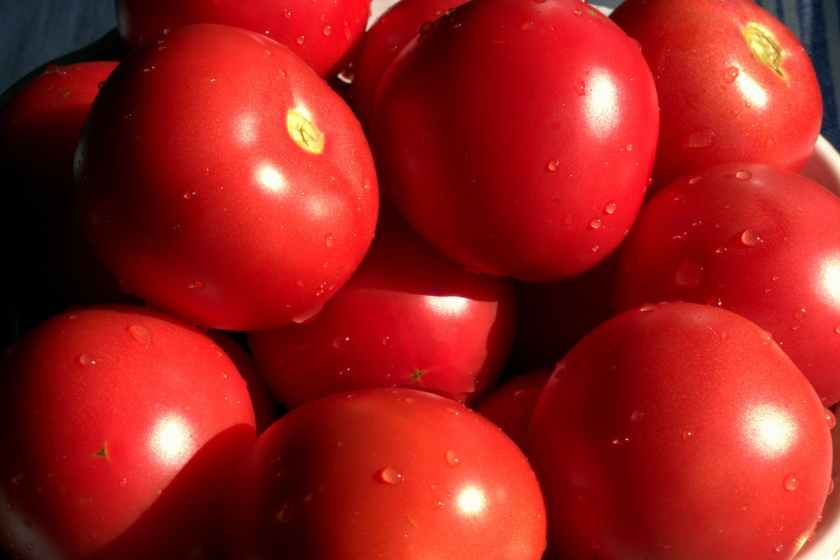 full frame shot of red tomatoes